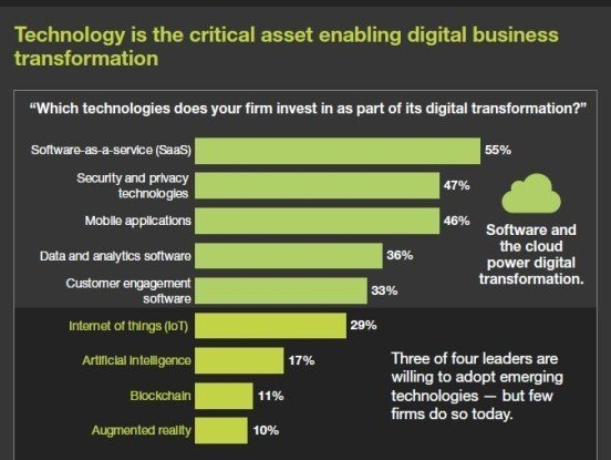 Technology as critical asset enabling digital business transformation
